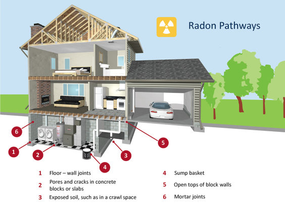 Radon pathways into the building